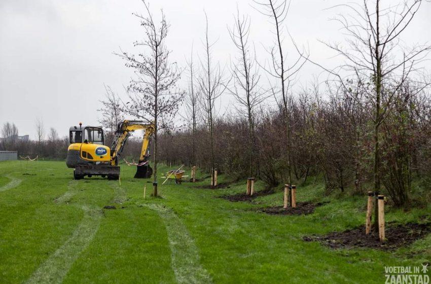 Bomen geplant op sportpark De Omzoom